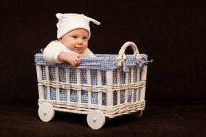 toddler carrier